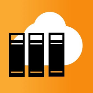 Hosted business application servers